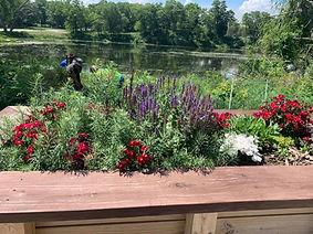 Adaptive Garden in Marquette Park.jpg