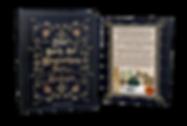 Das-Buch-der-Magischen-Party-Rezepte-Cov