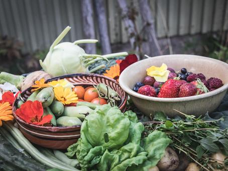 Kuinka voimme varautua muuttuvaan ilmastoon puutarhassa?
