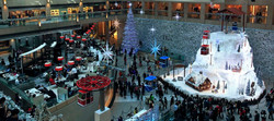 Landmark Zero Degree Christmas