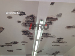 Waterproofing_Garage_ceiling_