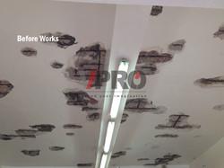 Waterproofing_Garage_ceiling_