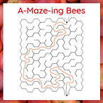 RN - Maze Answe.png