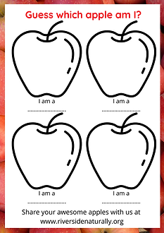 RN - Apple Names.png