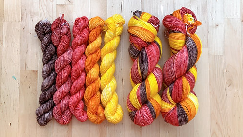 Sock Mini skeins - Circus of Fall set