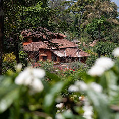 Honey valley, Coorg.