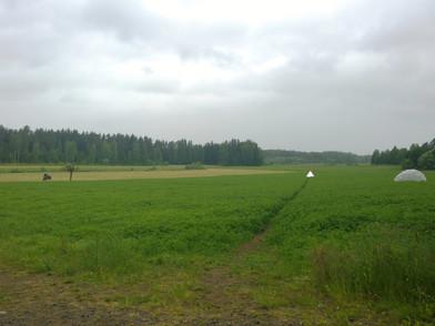 Antti: 24.06.2014