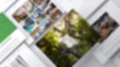 Piiere Website Presentation.jpg