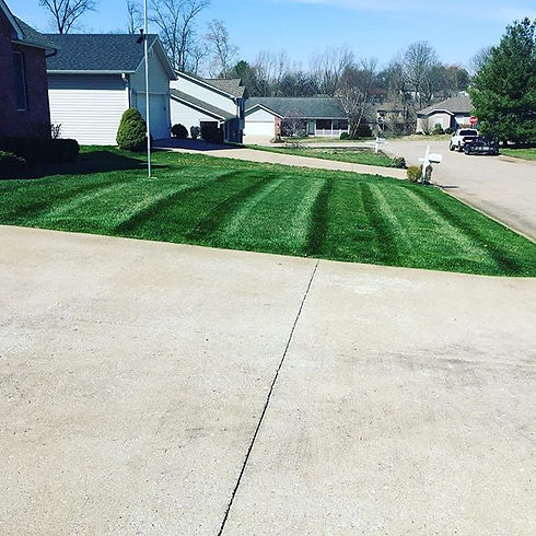 Do you want the most beautiful lawn in y
