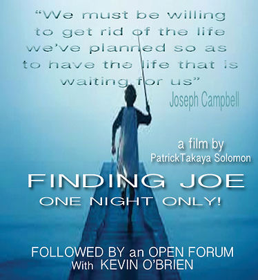 Finding Joe .jpg
