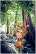4850 Jourama Falls