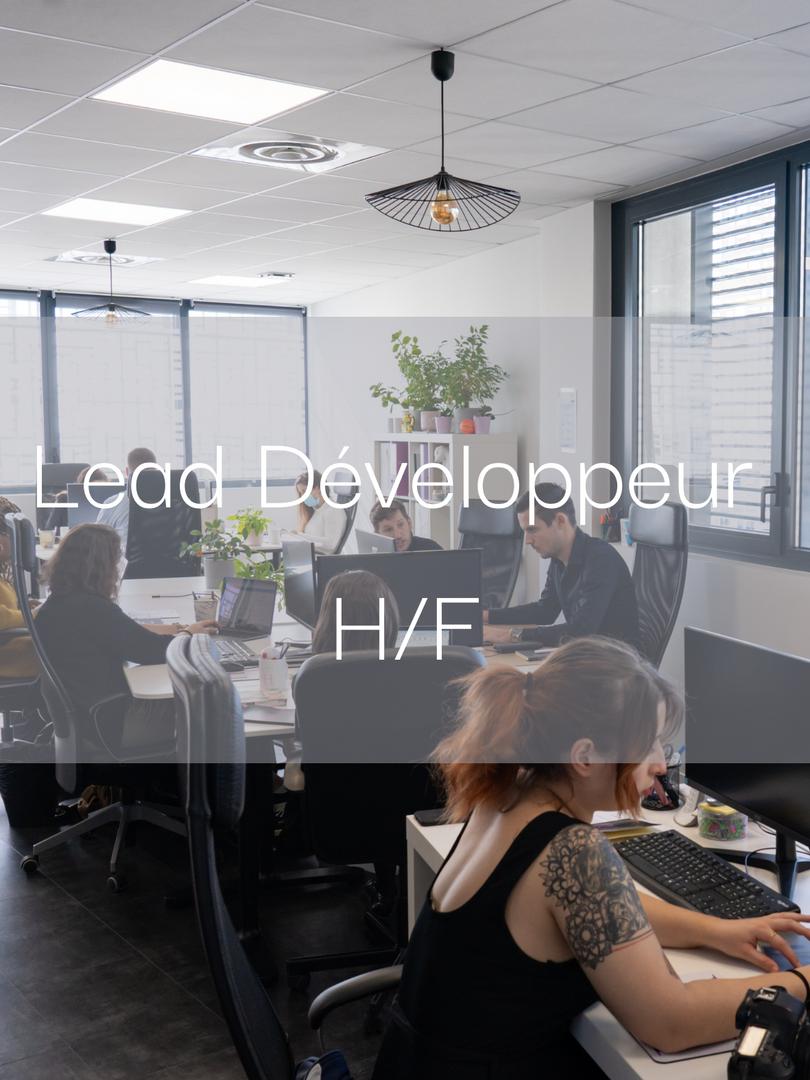 Lead développeur H/F