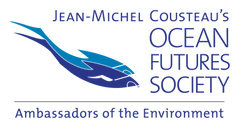 AOTE Full Logo Blue on Transparent.png