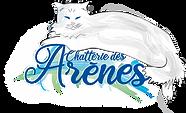 logo CdArenesdef 1.png