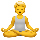 person-in-lotus-position-apple.png