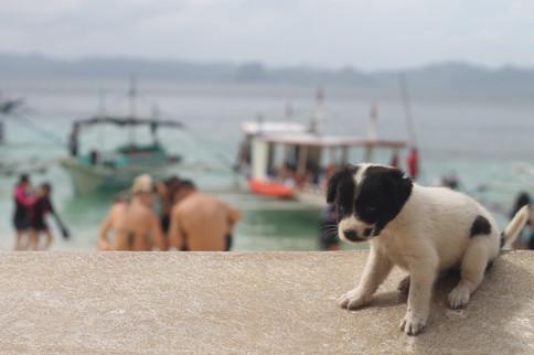 El Nido, The Philippines