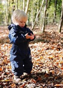 Autumn Exploring