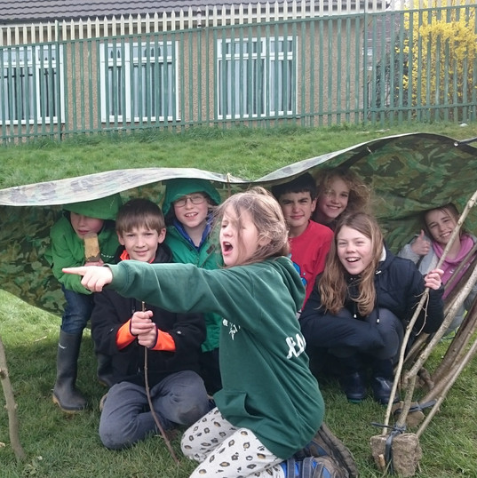 The world of den building