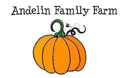 pumpkin patch logo.JPG