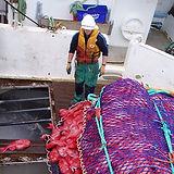 CSIRO_fishermen_edited.jpg