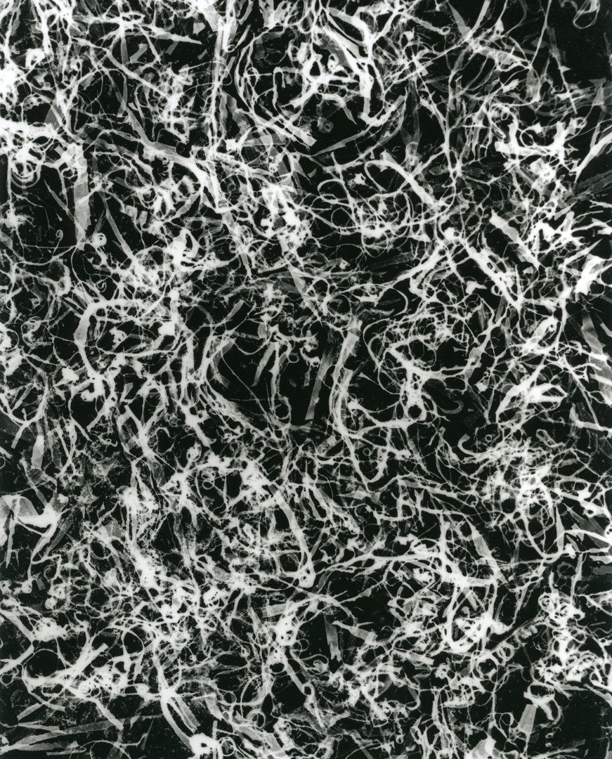 Din, c.2001-2018, silver gelatin print, 25.4 x 20.32cm