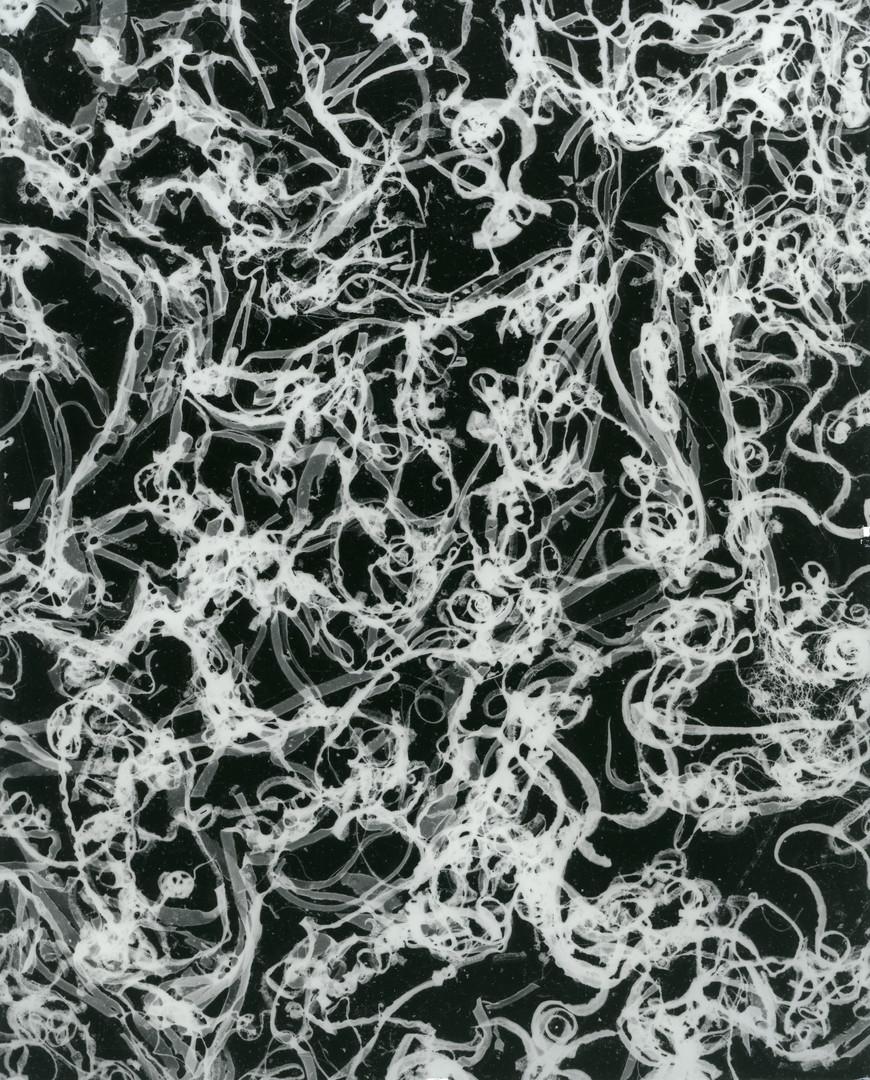 Untitled, c.2001-2018, silver gelatin print, 25.4 x 20.32cm
