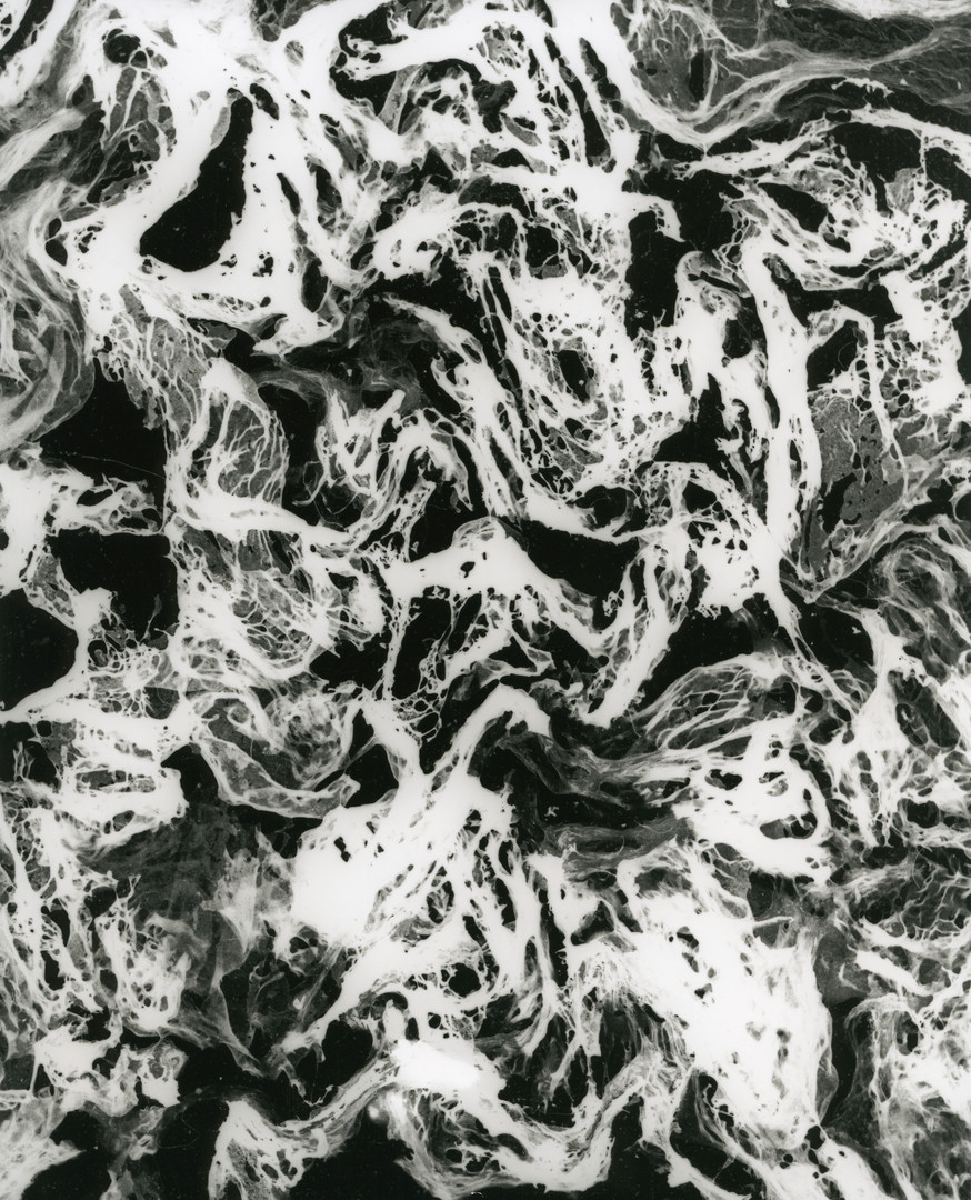 Mop, 2004-2018, silver gelatin print, 25.4 x 20.32cm