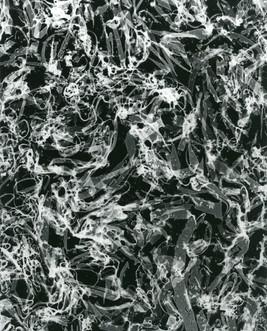 Doldrums, c.2001-2018, silver gelatin print, 25.4 x 20.32cm