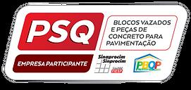 PSQ_2018_Blocos-12.png