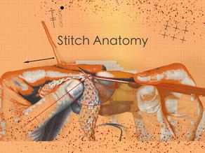 Stitch Anatomy Part 2: How Hook Size Affects Gauge.