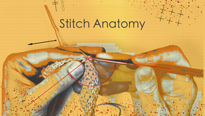 Stitch Anatomy 3: Tall Post  Stitches & Gauge