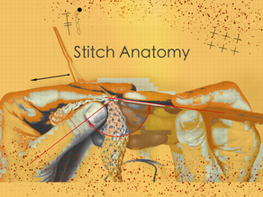 Stitch Anatomy 3: Tall Post  Stitches & Gauge