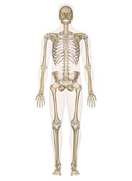 maladiesosteo-articulaires et rhumatologiques