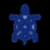 Tortue_seule_tache-01_edited_edited.png