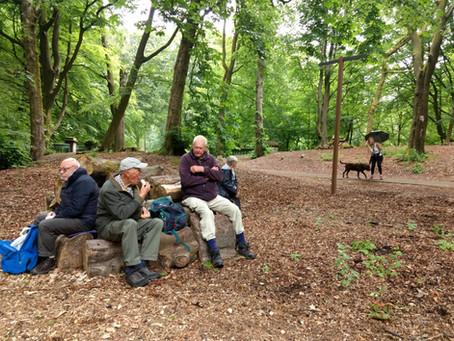 Milemunchers Photos - Haigh Hall Park