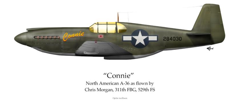 Morgan -5.png