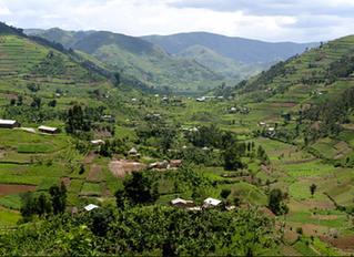 Rwanda Shines, Taking Bold Steps In Green Energy