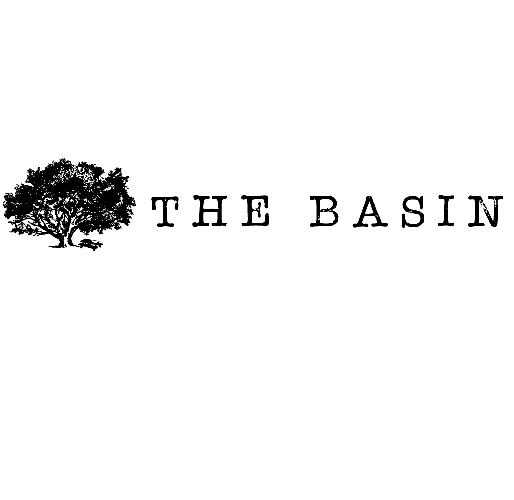 The Basin.png