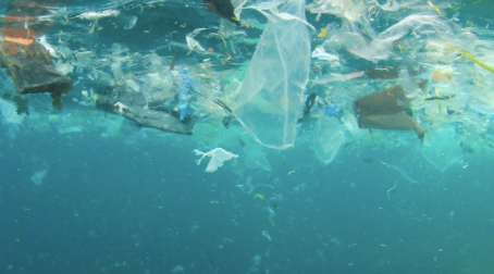 How do you think the biggest polluters (China and USA) can be persuaded to help the oceans?