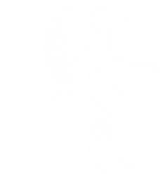 Helldiver_Logo_clean_white.png