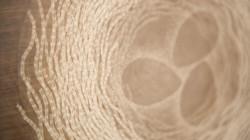 From wood -Walnut-