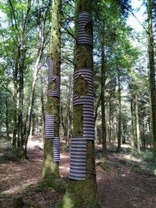 land'art Gueret Labejof.jpg