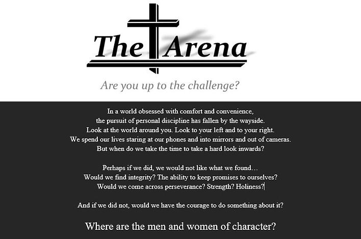 The Arena Top.JPG