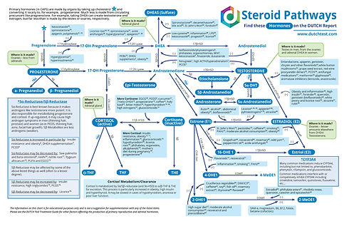 Steroid-Pathways-Chart-2020_Page_1.jpg