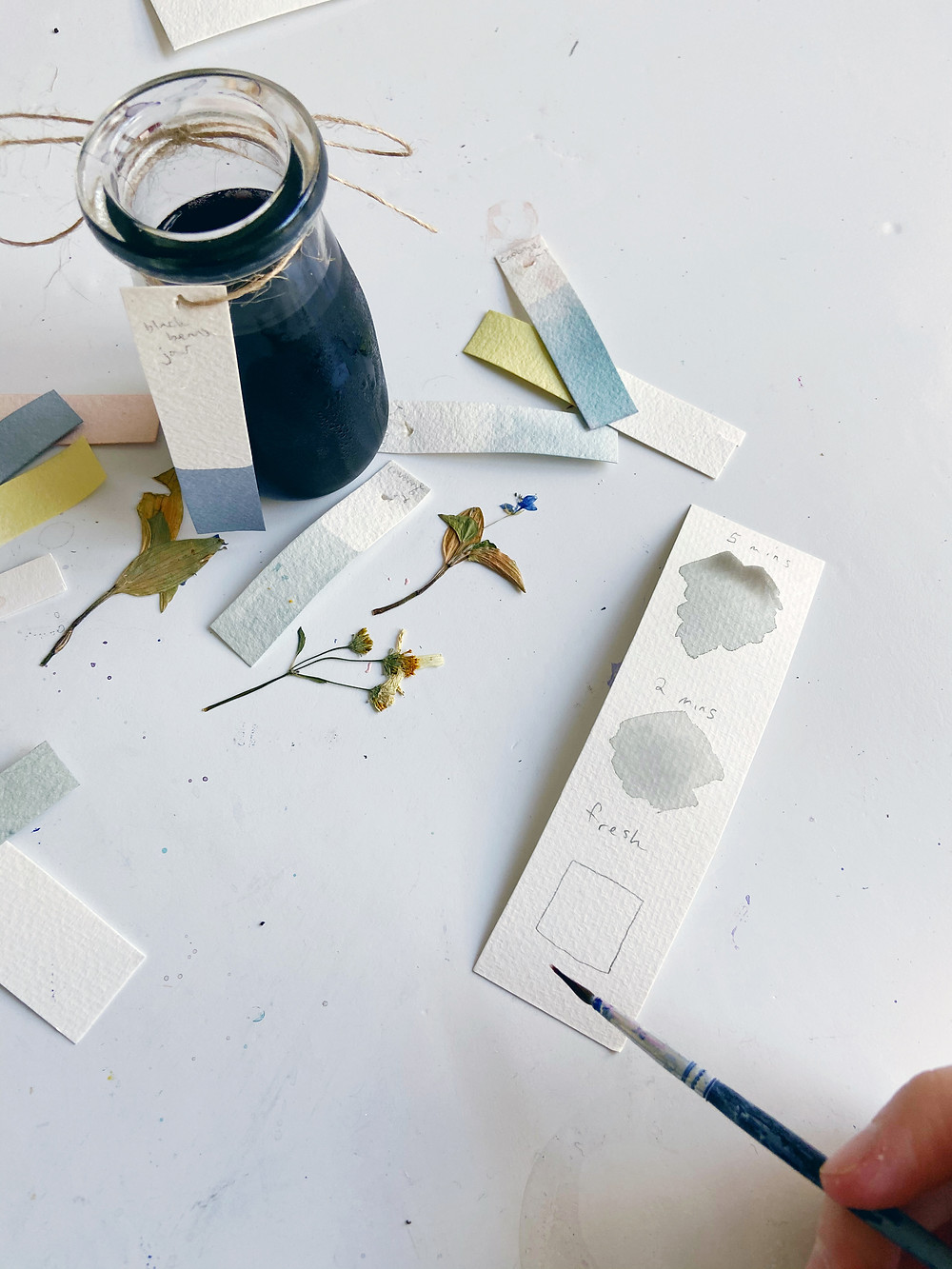 a bottle of natural ink sits beside dried flowers, swatches of different colors, and a piece of paper showing the color change over time when using eggplant ink