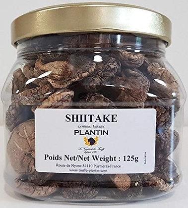 Shiitake 10 Grammes
