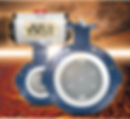Sure Seal High Performance Butterfly Valve