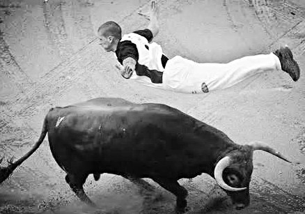 Wrestling the Bull