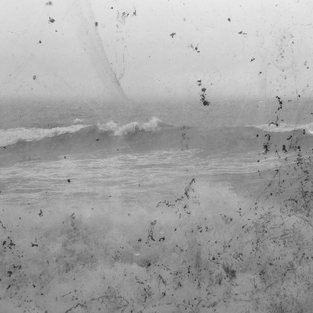 Mandy Williams: Sea Level