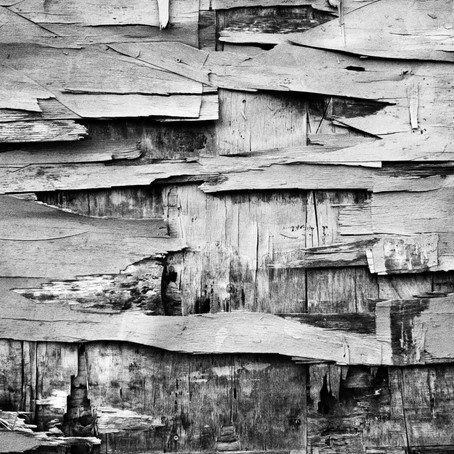 Steve Shepherd: photographs